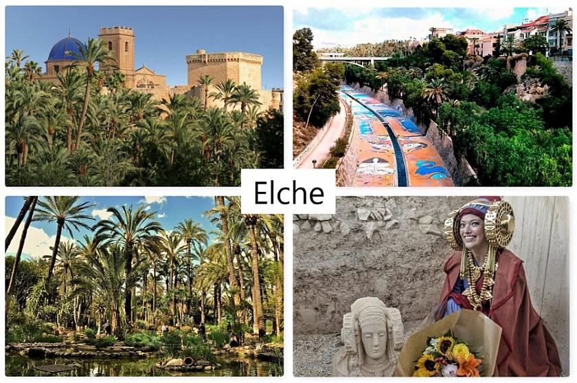 Elche - Van Dam Estates