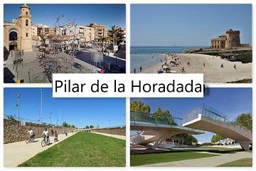 Pilar de la Horadada - Van Dam Estates