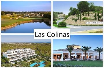Las Colinas - Van Dam Estates