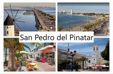 San Pedro del Pinatar - Van Dam Estates
