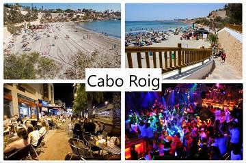 Cabo Roig - Van Dam Estates