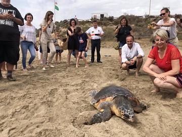 Murcia in de ban van baby zeeschildpadden - Van Dam Estates