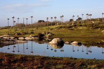 Groeten uit het ooievaarsdorp - Van Dam Estates