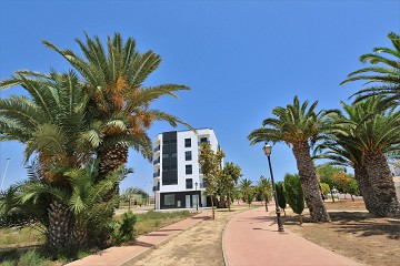 Appartement in San Pedro del Pinatar - Verhuur - Van Dam Estates