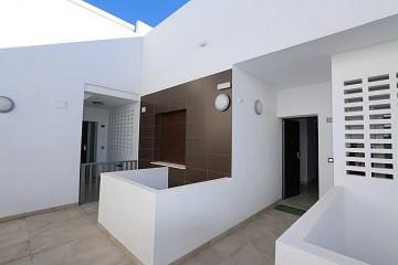 Luxe eerste lijn strand penthouse ?> - Van Dam Estates